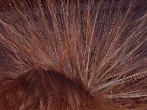 Van de Graaff - electrostatic hair